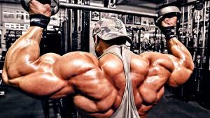 un gruppo muscolare al giorno