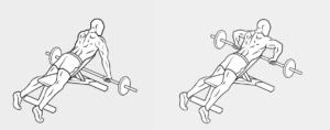 13 esercizio dorso