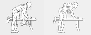19 esercizio dorso