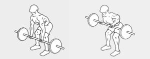 20 esercizio dorso