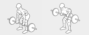 3 esercizio dorso