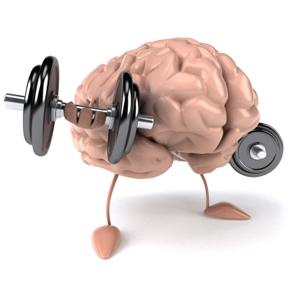 Perche allenare un muscolo al giorno