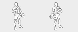 esercizi bicipiti16