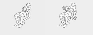 esercizi bicipiti2