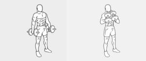 esercizi bicipiti21-caricato