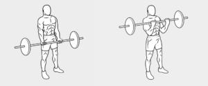 esercizi bicipiti9