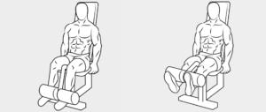 esercizi gambe16