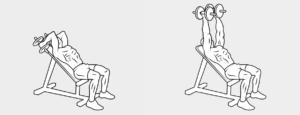 esercizi tricipiti11