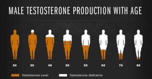 eta-testosterone